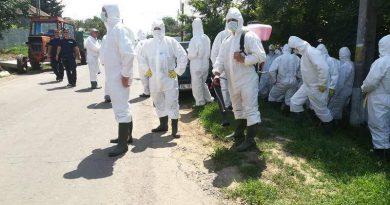 Újabb őrület a láthatáron: emberre is terjedő sertésinfluenza-vírus