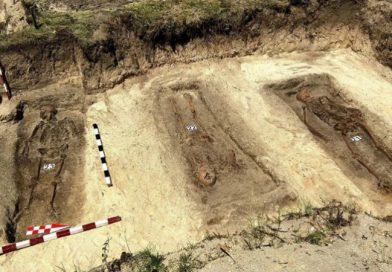DNS-tesztekkel azonosítanák a kommunizmus áldozatainak előkerült földi maradványait