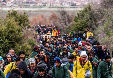 Figyelmeztető lövésekkel állítottak meg két migránst a román határrendészek
