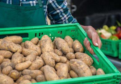 Mezőgazdasági miniszter: Katonai rendelet fog intézkedni a kistermelői piacok újranyitásáról