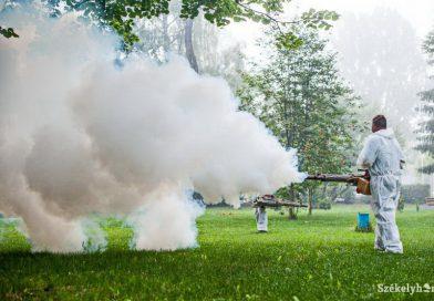 Méhészek figyelmébe: szúnyogirtás lesz Érmihályfalván